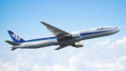 Find cheap flights on ANA