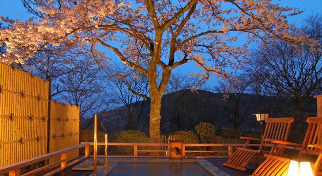 Mikawaya Ryokan - Hakone - Spa