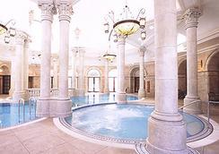 Tokyo Disneysea Hotel Miracosta - Chiba - Pool