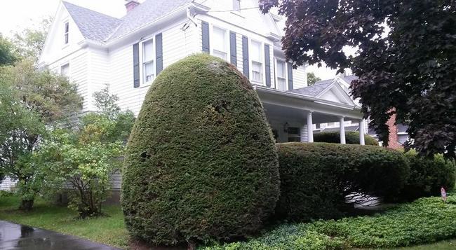 Park House Bed And Breakfast - Binghamton - Building
