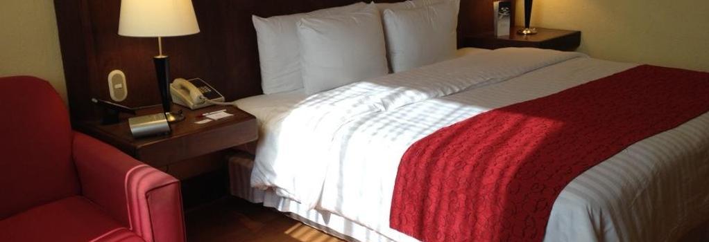 Ramada Va Veneto Mexico City South - Mexico City - Bedroom