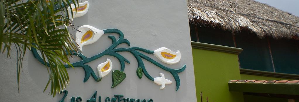 Los Alcatraces Cozumel - Cozumel - Building