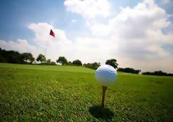 Singapore Marriott Tang Plaza Hotel - Singapore - Golf course