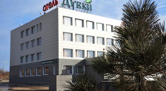 Dubki Hotel - Samara - Building