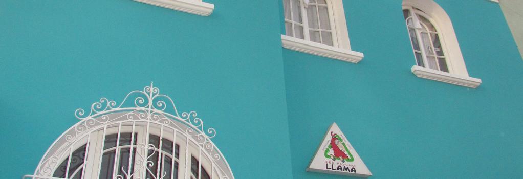 Red Llama Eco Hostel - Lima - Building